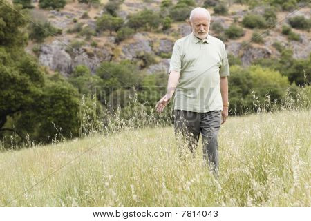 Old Man In Grass