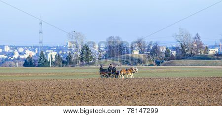 Coachman With Horse Coach And The Skyline Of Frankfurt