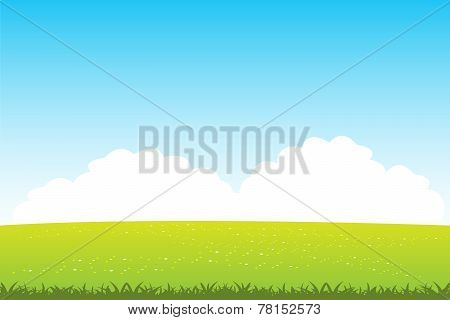 Clean Field With Flower
