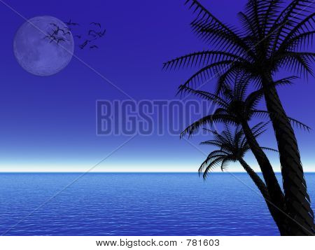 Tropical moon night