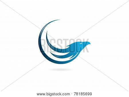 hawk business vector logo design