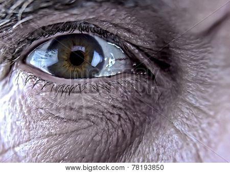 Older Man's Eye