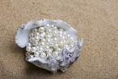 The exotic sea shell with a pearl beads lies on sand poster