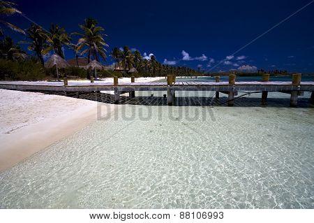 Beach Near The Harbor