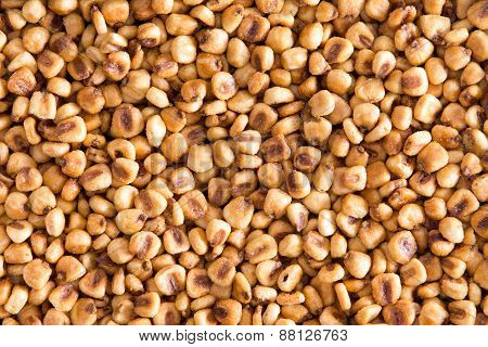 Toasted Salted Corn Nuts Background