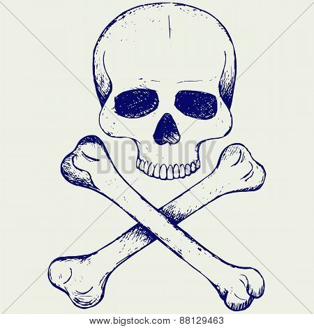 Skull and crossbones. Doodle style. Vector illustration on gray background poster