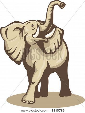 african elephant charging