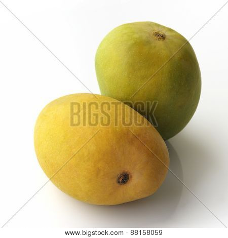Green And Yellow Alphonso Mangoes