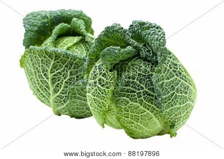 Two Heads Of Ripe Savoy Cabbage Isolated