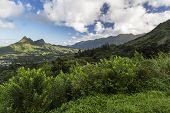 View of the mountains along the Pali Highway at the Nuuanu Pali State Park on Oahu Island in Hawaii. poster