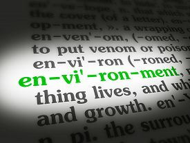 Dictionary Environment