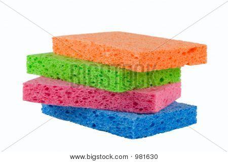 Four Sponges Alpha