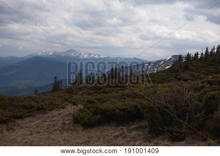 landscape in mountains Carpathians Ukraine Dragobrat  horizontal image