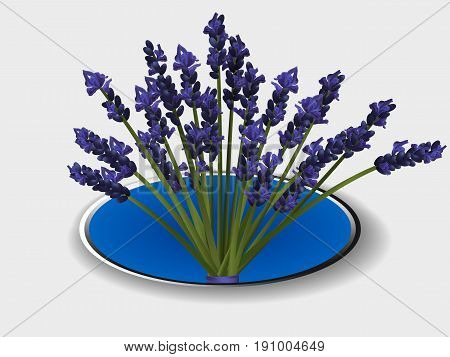 3D Illustration of a Bunch of Lavender in a Metallic Blue Border with Shadow