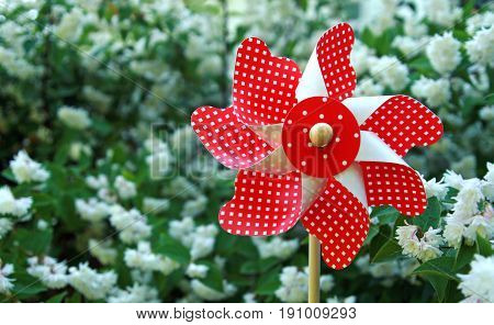 red checkered pinwheel toy in front of a white blooming bush