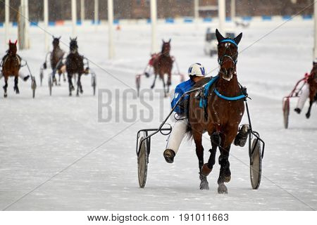 MOSCOW, RUSSIA - JAN 22, 2017: Horse race on snow-covered Moscow hippodrome on winter day. Central Moscow Hippodrome was founded in 1834.