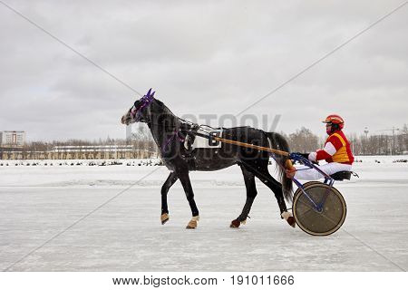 MOSCOW, RUSSIA - JAN 22, 2017: Participant of horse race at racetrack of Moscow hippodrome on winter day. Central Moscow Hippodrome was founded in 1834.
