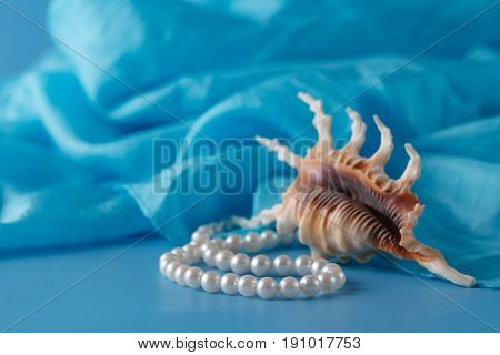Pearl And Shell, Paua Shell And Pearl Ornaments On Blue Drapery