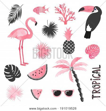 Tropical set in pink and black colors. Flamingo toucan watermelon palm leaves. Vector collection.