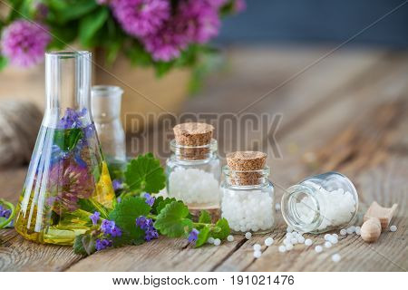 Vials Of Tincture Or Infusion Of Healthy Herbs, Bottles Of Homeopathy Globules And Healthy Herbs On