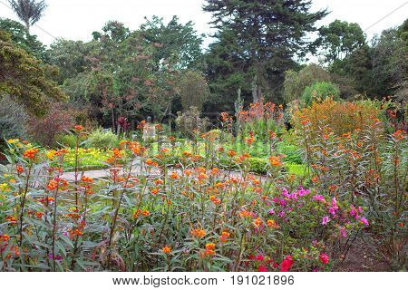 The Botanical Gardens in Bogota Colombia, one of the major tourist attractions of the city