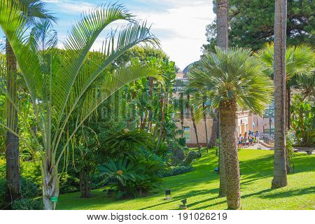 Monaco, Monte Carlo - September 17, 2016:  Jardins de la Petite Afrique. African garden in front of Grand casino