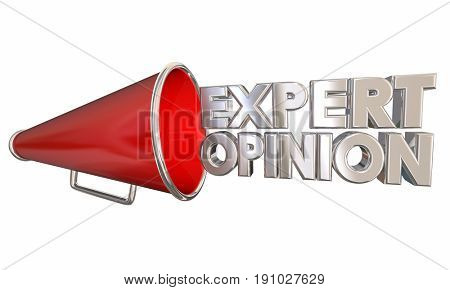 Expert Opinion Megaphone Bullhorn Words 3d Illustration