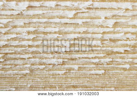 Macro texture of a wooden cut after sawing a board with a circular saw