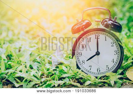 8 O'clock Retro Clock In The Garden Grass Field With Sun Light.