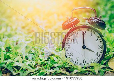 4 O'clock Retro Clock In The Garden Grass Field With Sun Light.