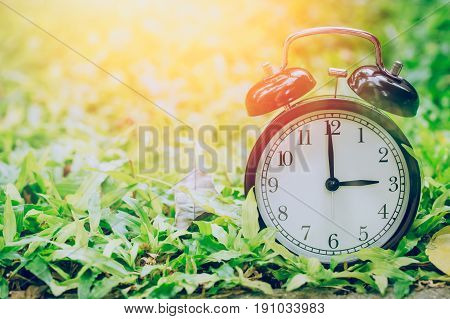 3 O'clock Retro Clock In The Garden Grass Field With Sun Light.