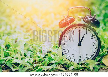 1 O'clock Retro Clock In The Garden Grass Field With Sun Light.