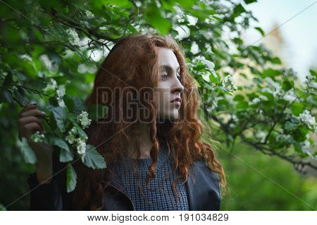 Artistic portrait of young redhead girl in blossom tree