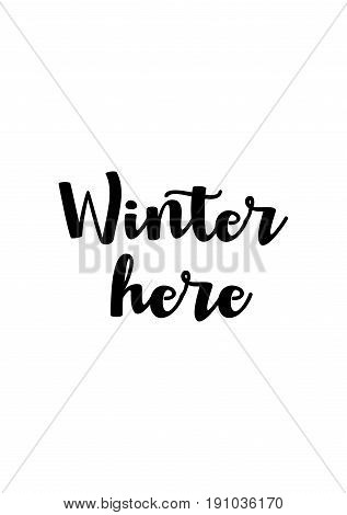 Isolated calligraphy on white background. Quote about winter and Christmas. Winter here.