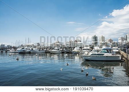 Punta del Este Uruguay February 29 2016 - Yachts of the rich people in Punta del Este harbor Uruguay