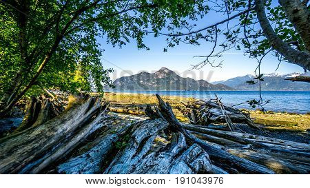 Driftwood on the beach of Porteau Cove on Howe Sound with Anvil Island in the background. Porteau Cove is along Highway 99 between Vancouver and Squamish, British Columbia