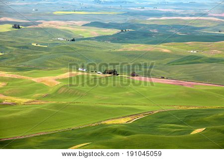 Aerial view of Palouse landscape from Steptoe butte