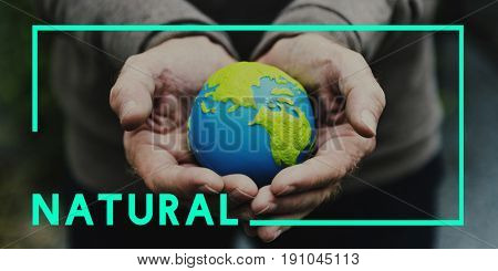 Nature Ecology Natural Environment Concept