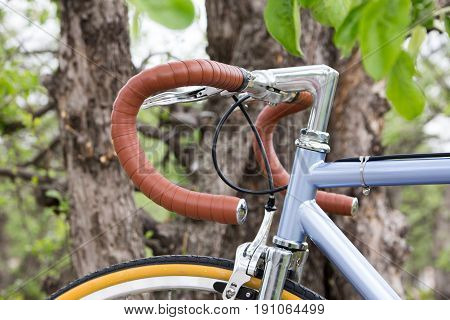bicycle near the tree. Steering wheel bike close-up. Outdoors. Retro style.