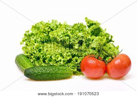 healthy nutrition concept fresh leafy vegetables or green lettuce leaf with red tomatoes and cucumber isolated on white background