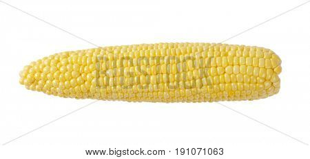 ripe corn cob on off-white background with shadows