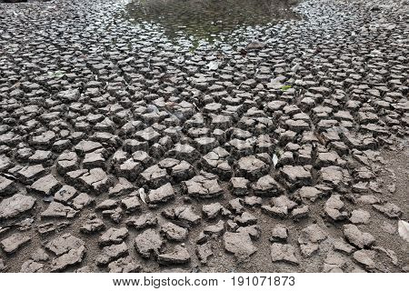 Dry ground waiting for water Drought concept.