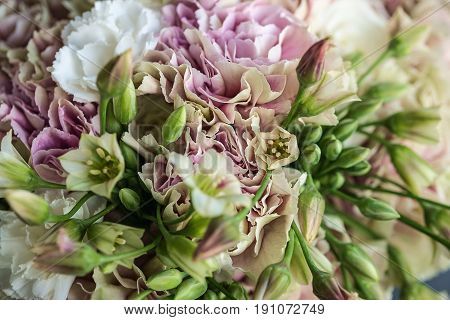 Pink and white carnation bouquet with green allium