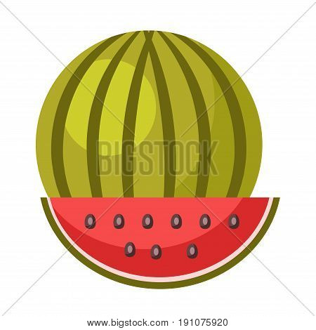 Whole ripe juicy natural watermelon with striped green skin and red slice with small black pits isolated vector illustration on white background. Huge watery berry that has sweet refreshing taste.
