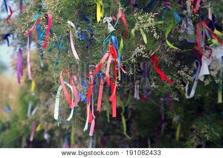 Ribbons on a tree for making wishes