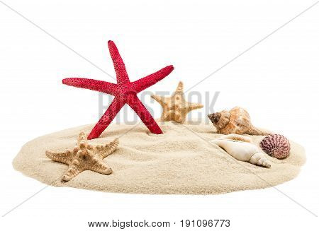 Sea shells and sand isolated on white background
