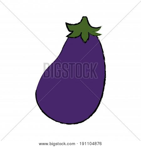 Eggplant fresh vegetable icon vector illustration graphic design