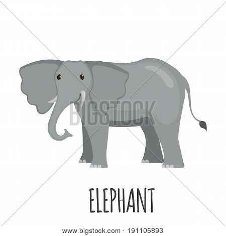 Cute Elephant in flat style isolated on white background. Cartoon african elephant. Zoo animal. Vector illustration.