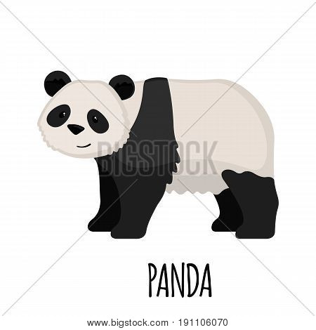Cute Panda in flat style isolated on white background. Cartoon panda. Zoo animal. Vector illustration.