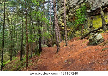 trail through forest and along buttes of castle mound pine forest in jackson county wisconsin
